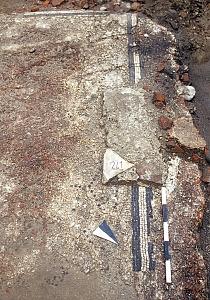 Pavimento di una domus conservata sotto Palazzo Carmagnola, in via Broletto 7.